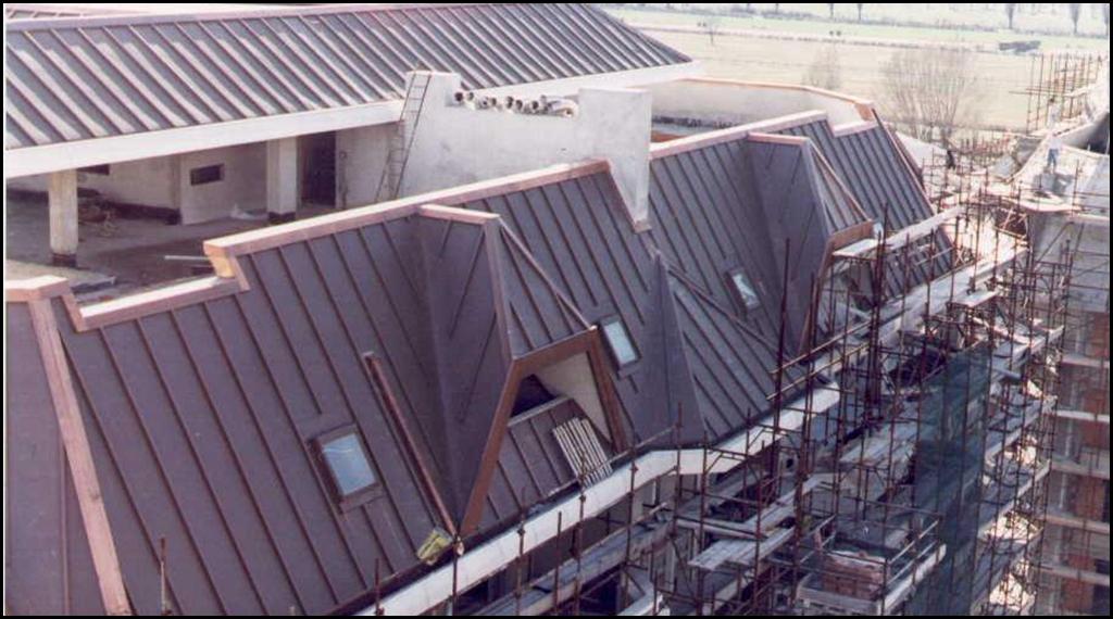 Gli specialisti del tetto